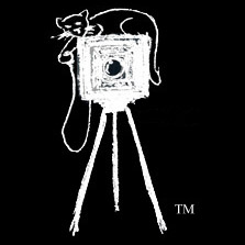 Cheshire Cat Photo logo: Cat on box camera and tripod squezing shutter release bulb