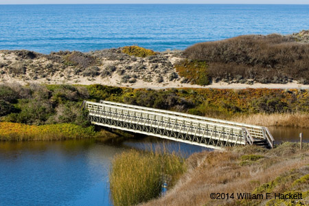 Bridge between Pescadero State Beach and Pescadero Marsh