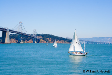 Bay Bridge sailing