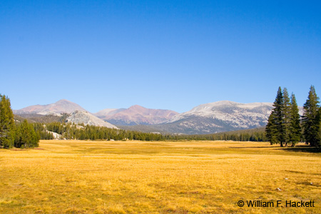 Camping is available at the Tuolumne Meadows Campground (reservations