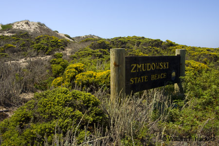 Zmudowski State Beach sign and sand dunes